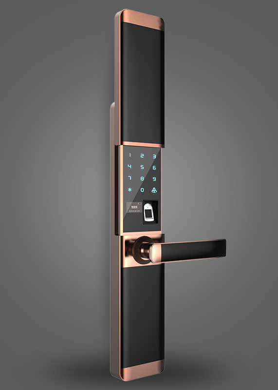 Z-212Fingerprint password lock