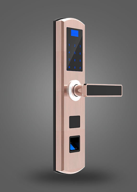 Z-102Fingerprint password lock